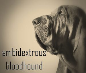 logo for ambidextrous bloodhound